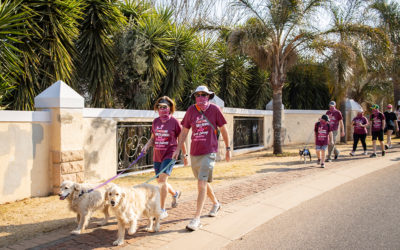 Spring Walk 2021